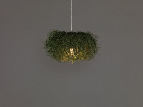 Arturo Alvarez Caos CA04B grün