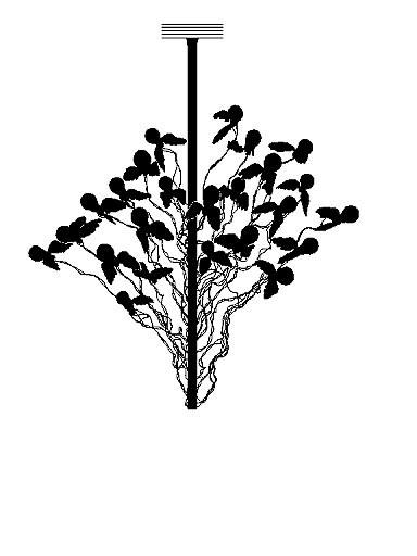 ingo maurer birds birds birds pendelleuchten im. Black Bedroom Furniture Sets. Home Design Ideas