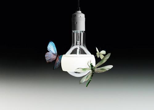 Ingo Maurer - Johnny B.Butterfly