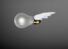 Birds Birds Birds Ersatz - Glühlampe