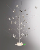 La Festa delle Farfalle